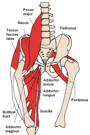 How To Tape For A Hip Flexor
