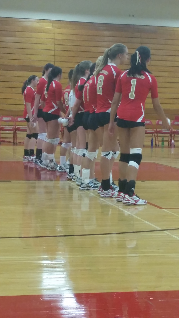 Volleyball - Recap Of The Fall season At Henry Sibley High School 5
