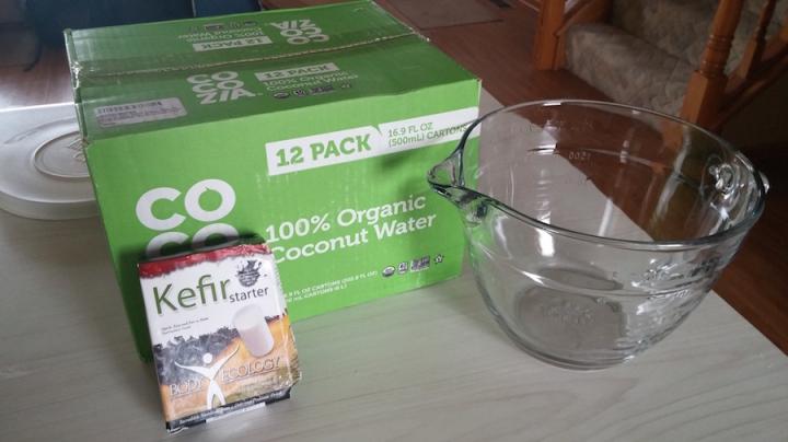Starting items for kefir